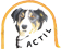 Logo Association Française du Border Collie